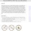 Timeblock Antifalten Serum mit Soforteffekt, Hyaluron-Creme Komplex – unisex, 50 ml - Malus Domestica